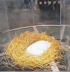 鳥の巣の中の白きPENCK