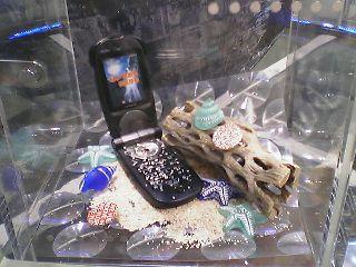 砂浜と貝殻とブラックマーク