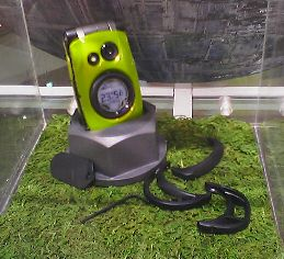 芝生の上に充電器に収まったグリーンフラッグ.まわりにプロテクターが散らばっている.