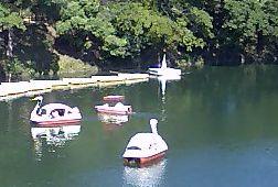 川には足こぎボートが.