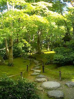 緑爽やかな飛び石の道.