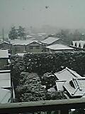 東京雪化粧